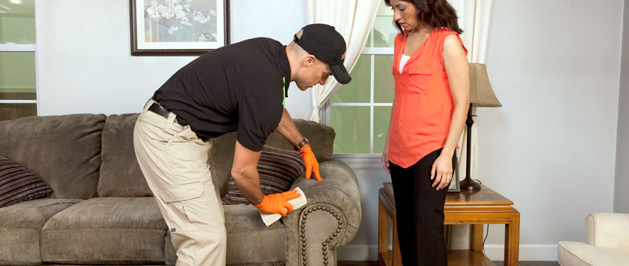 Marion, IL carpet upholstery cleaning